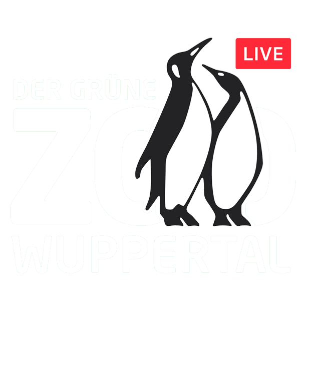 Zoo Wuppertal - Riedel Livestreaming